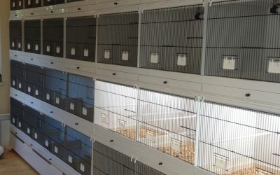Preparing the cages for the upcoming breeding season